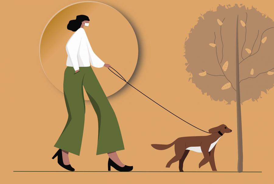Come diventare dog sitter: Rover, corso, stipendio