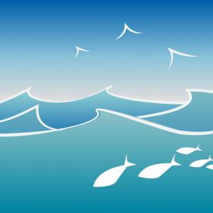 Come diventare biologo marino e quanto guadagna